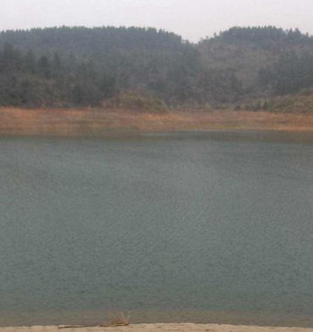 江西省吉安县400亩水库转让招租