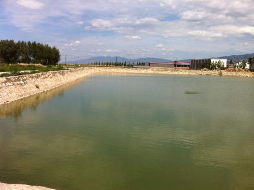 万亩水库求合作养殖 招租或承包