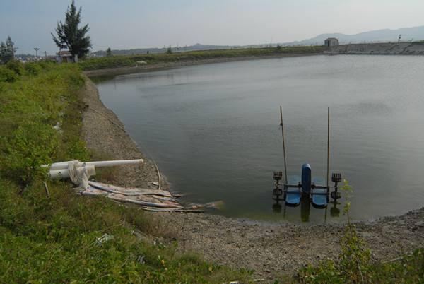 600亩淡水养殖场转让 水面招租 池塘转让